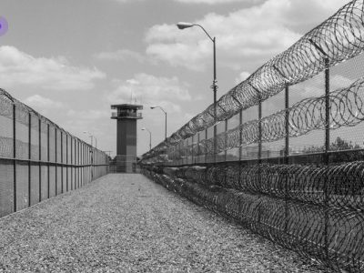 ملاقات مجازی زندانیان